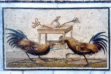 Briga de galos, mosaico romano nas ruínas de Pompéia.
